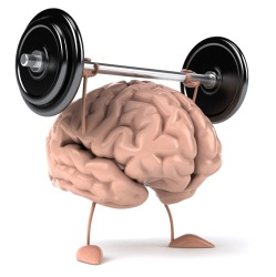 fit_brain
